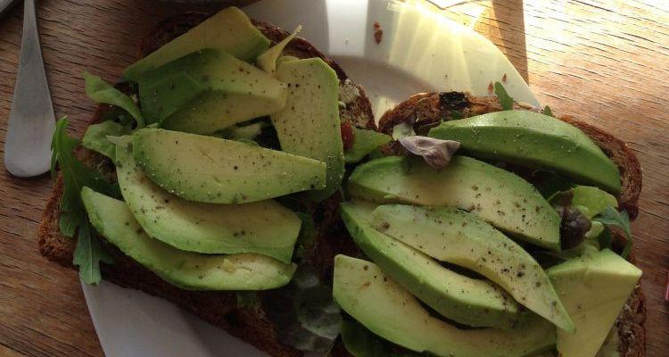 Avocado Op Brood Salvedo Health Clinic