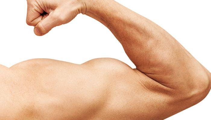 Spieren veranderen snel